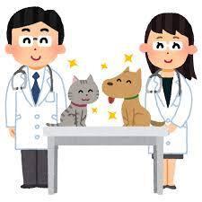 [正社員]看護師/准看護師 *無資格OK*動物看護師!